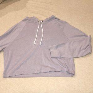 Violet Crop Hoodie Sweater